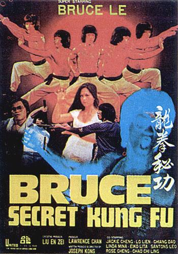BrucesSecretKungFu